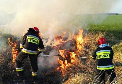 Pożary traw – taktyka działania